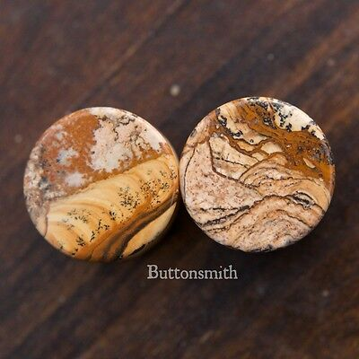 $7.45 • Buy Pair Of Picture Jasper Organic Stone Plugs Double Flared - 6mm - 25mm -10sizes