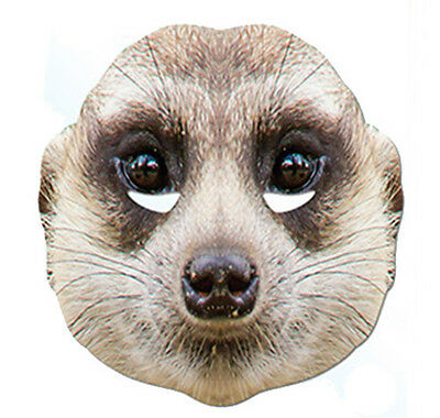 Meerkat Animal 2D Card Party Face Mask Fancy Dress Up Zoo Exotic Theme • 3.29£