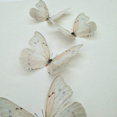 AU19.78 • Buy  Butterfly Decorations 6 Ivory- Cream Sparkling 3D Butterflies Bedroom Wedding