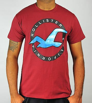 AU29.99 • Buy HOLLISTER Logo Graphic T-Shirt California Surf Casual Wear In Maroon