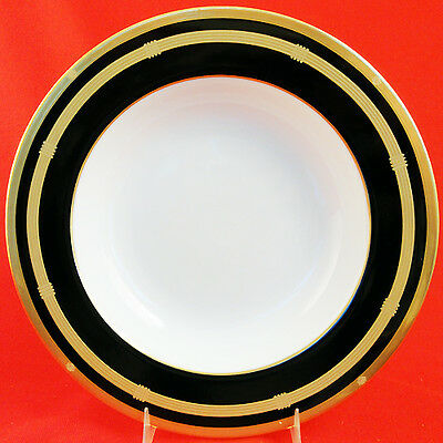 $69.99 • Buy GAUDRON ONYX Christian Dior Rim Soup 9.2  Diameter NEW NEVER USED Made In Japan