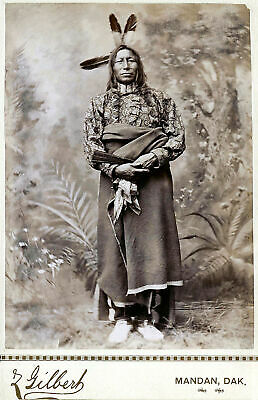 £3.99 • Buy Native American Indian Crow 1880 Portrait Photo Art Print Picture