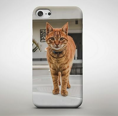 £7.99 • Buy Ginger Cat Kitten Cute Animal Pointy Ears Posing Picture Pet Phone Case Cover