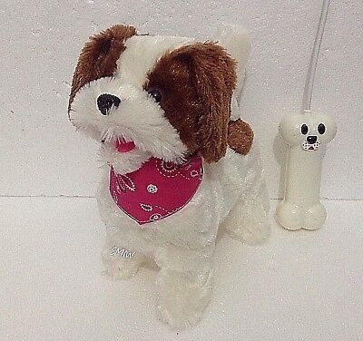 Best Dancing Dog Deals Compare Prices On Dealsan Co Uk