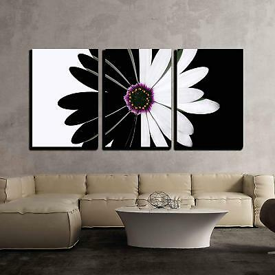 $49.99 • Buy Wall26 - Flower Black And White - Canvas Art Wall Home Decor - 16 X24 X3 Panels