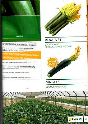 £154.28 • Buy Clause Seeds The Marrow, Green Dark CLX2909 Fi, Envelope X1000 Long Cylinders