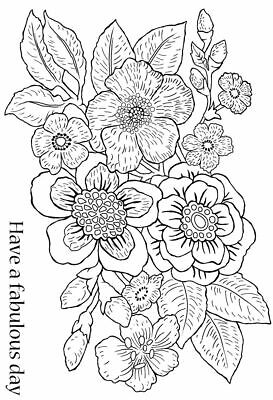 Woodware Clear Magic Stamp Set - Bold Blooms - Isabella JGS635 • 6£