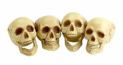 $21.99 • Buy (4) Life-Size Plastic Human Skull Decoration Prop Skeleton Head Halloween Decor