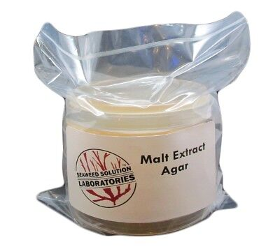 $19.95 • Buy Sterile Malt Extract Agar (MEA)  5, 100mm X 15mm Plates- Great For Mushrooms!!!