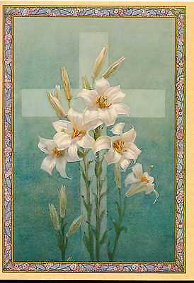 Lilies & Cross Margaret W.Tarrant  Congratulations On Your First Communion Card  • 0.99£