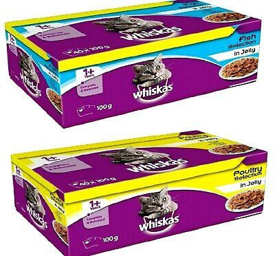 WHISKAS 1+ ADULT POUCHES 100G Poultry Or Fish Wet Cat Food In Jelly Feed Bp Meal • 23.99£