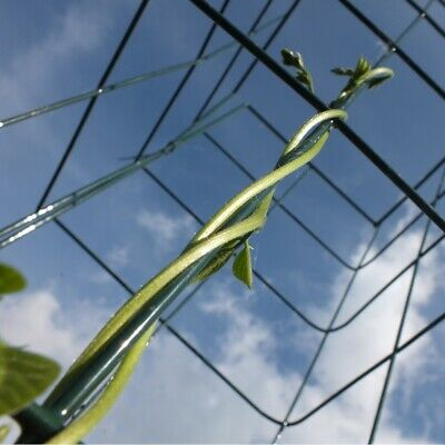£19.95 • Buy Wall Plant Support Trellis Mesh Flexigro For Climbing  Climbers Clematis Panel