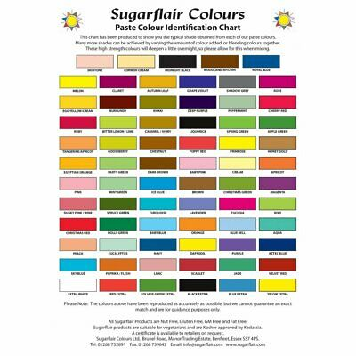 SugarFlair Paste Colour - Concentrated Food Coloring Paste Gel 25g/42g Pot • 4.29£