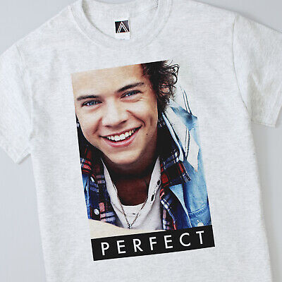 Perfect Styles T Shirt Indie Music Harry Directioner Hipster Fan Tour Cute Tee • 15£