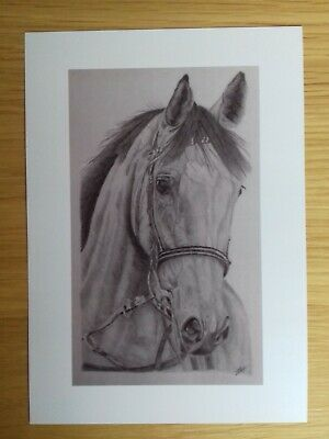 £1.95 • Buy HORSE PICTURE A5 Print Of Original Drawing Animal Art Gift Wall Decor