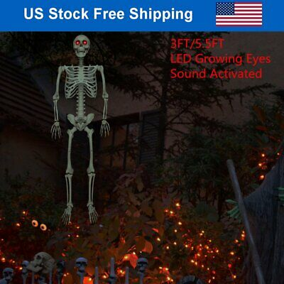 $49.86 • Buy Halloween Skeleton Prop Life Size Posable Sound Activated Light Up LED Eyes