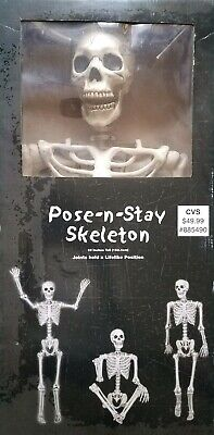 $25 • Buy Halloween Skeleton - Halloween Life Size Skeleton - 60in