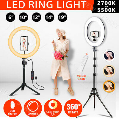 AU19.97 • Buy 6 /10 /12''/14 /19  Dimmable Diva LED Ring Light Tripod Stand Selfie Circle Lamp