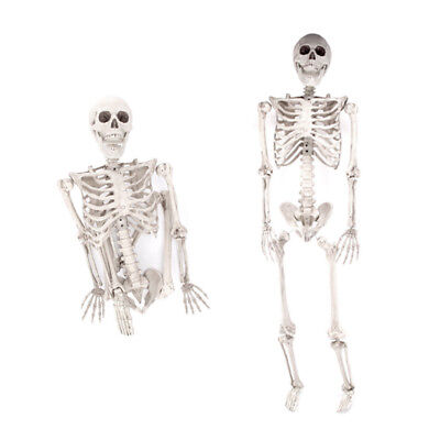 $17.96 • Buy 35  3ft Halloween Party Decoration Props Life Size Skeleton Poseable Human Bone
