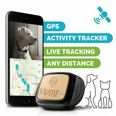 Mini GPS Real Time Tracker Car Pet Anti-theft Spy Locator Tracking Device Remote • 21.87£