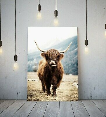 Highland Cow - Deep Framed Canvas Wall Art Picture Print- Brown Animal • 11.99£