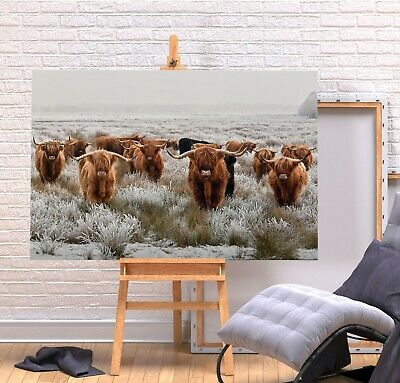 £11.99 • Buy Herd Highland Cows 1 - Deep Framed Canvas Wall Art Picture Print- Brown Grey
