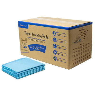 £19.99 • Buy AllPetSolutions Pet Puppy Pads 100 Pack Toilet Training Pee Wee Mats 60x40 60x90