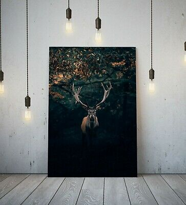 £14.99 • Buy Stag 4- Deep Framed Canvas Wall Art Picture Print- Animal Black Brown Green