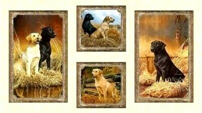 Dogs Fabric Cotton Craft Quilting Large Panel Labradors 44  X 24  • 15.99£