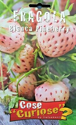 Fragaria Vesca Strawberry White Cv Pineberry 1 Pack Seeds Freshwater Cultured • 3.16£