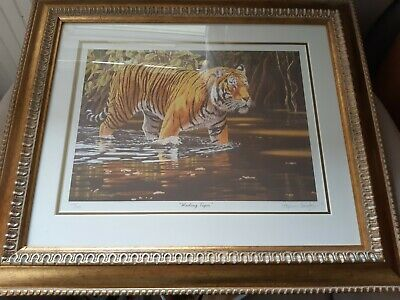 Stephen Gayford Signed Print Limited Edition  Wading Tiger    • 8£