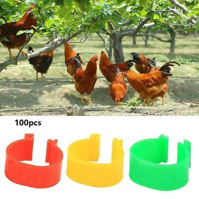 100pcs Clip On Leg Band Rings For Chickens Ducks Hens Fowl Poultry Pheasan Z8U6 • 3.40£