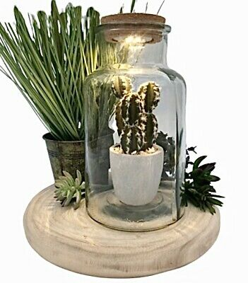 Terrarium Planter Plant Pot Recycled Glass Light Up Jar Bottle Garden Cork Lid  • 16.50£