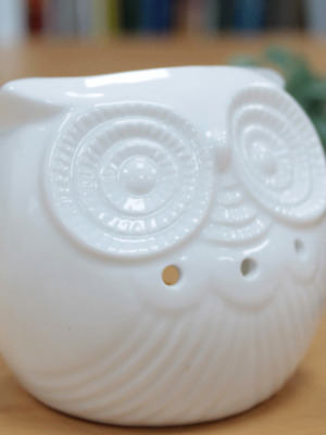 Owl Short Ceramic White Oil Burner Wax Aroma Fragrance Melts Candle Gift Present • 9.99£
