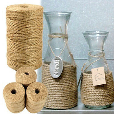 100M/Roll Craft Rope Jute For Gardening Applications DIY Durable Twine Natural • 2.88£