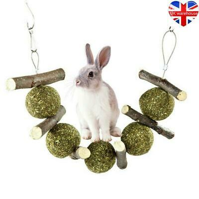 £5.72 • Buy Pet Teeth Grinding Toys Wood Tree Hanging Hamster Small Animal Cookie For Rabbit