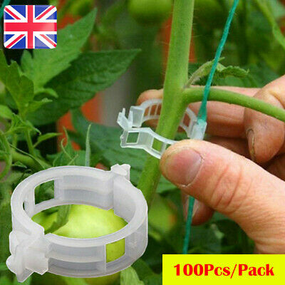 £6.79 • Buy 100Pcs Tomato And Veggie Garden Plant Support Clips For Trellis Twine Greenhouse