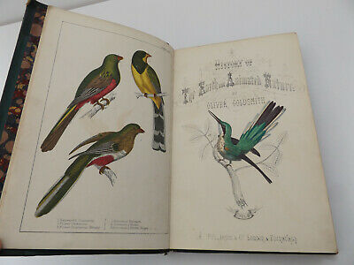 C1846 HISTORY Of The EARTH & ANIMATED NATURE Goldsmith 2Vol HAND-COLOURED PLATES • 69£