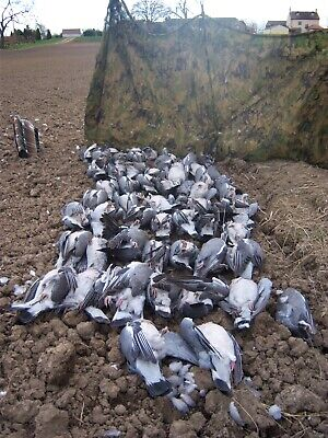 Set Of 4 Hide Poles With 2 X 3mts Stealth Net Decoying Pigeon Shooting/ • 48£
