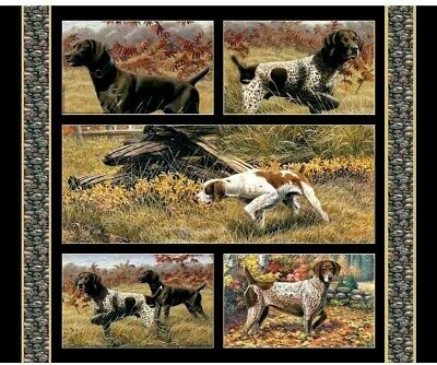 Dogs Fabric Cotton Craft Quilting Large Panel Labradors 36  X 44  Show Dogs • 15.99£