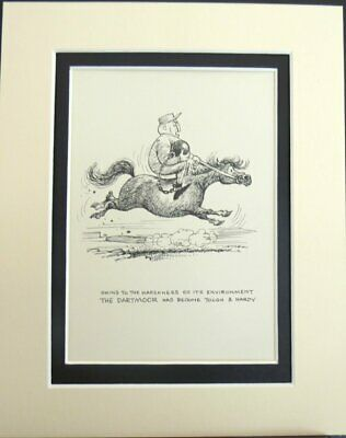 THE DARTMOOR PONY - Norman Thelwell Ponies In  10  X 8  DOUBLE MOUNTED PRINT • 9.50£