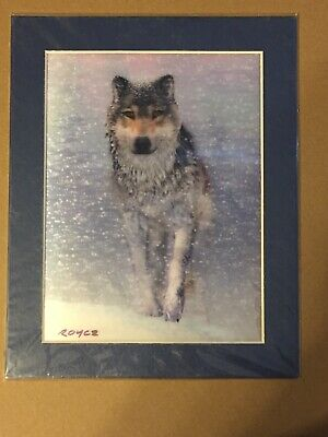 AU12.72 • Buy Lenticlar 3D Matted Picture Poster Of Wolf In Snow Wall Art Home Decor