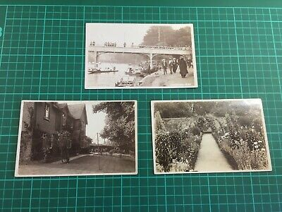 Three Postcards.  Bill Series  Of Maidenhead/Cookham, Berkshire. Early 1900's • 22£
