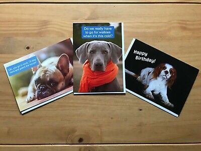 Dog Lovers Greetings Card Pack (3 X A5 Cards With Envelopes, Blank Interior) • 2£