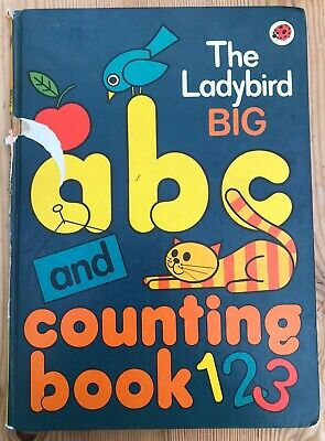 The Ladybird Big ABC And Counting Book • 2.50£