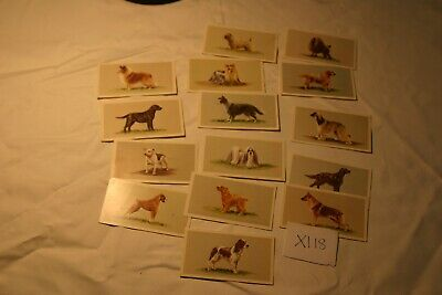 Top Dogs Collection-grandee-15 Cards-part Set • 1.10£
