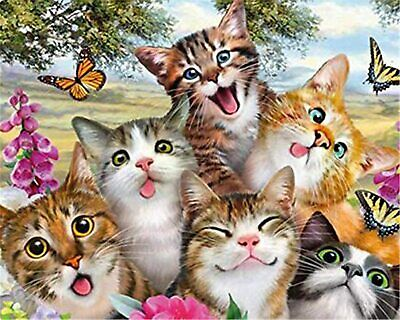 AU16.95 • Buy 5D Diamond Painting Kit- Art N Crafts-Cross Stitch / Diamonds By Numbers Cats