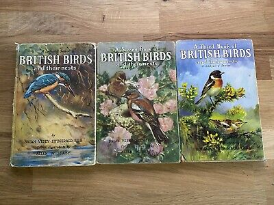 Ladybird Books 1st 2nd 3rd Book Of British Birds And Their Nests Series 536 DJ • 0.99£