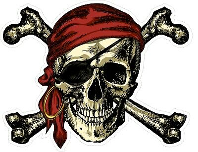 £2.99 • Buy Two Pirate Skull And Crossbones Vinyl Decal Stickers - For Fridges, Car & Laptop