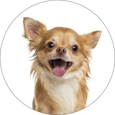 £2.99 • Buy Two Chihuahua Tan Dog Printed Vinyl Decal Stickers For Laptop Cars And Fridges
